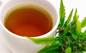 Infusión-de-marihuana-medicinal