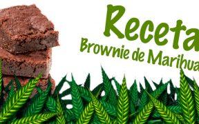 Brownies-Cannabicos