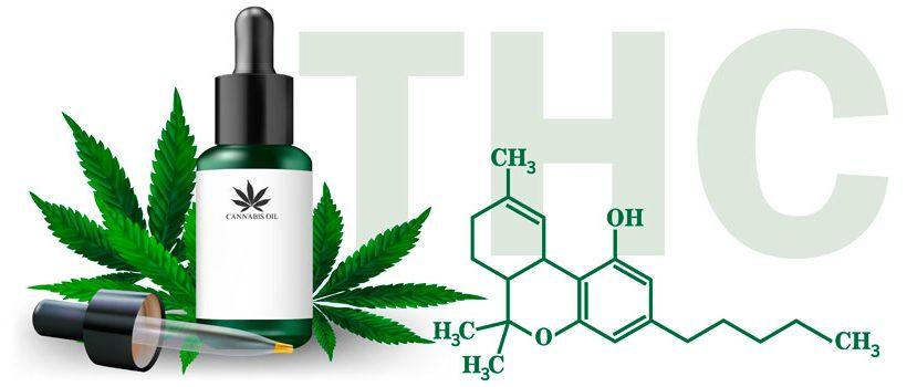 Cuánto THC usar para cocinar conmarihuana