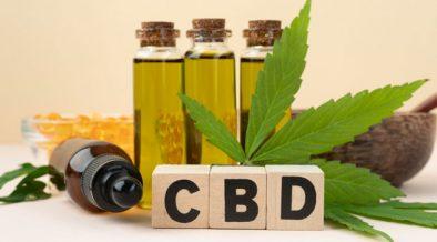 cocinar con aceite CBD