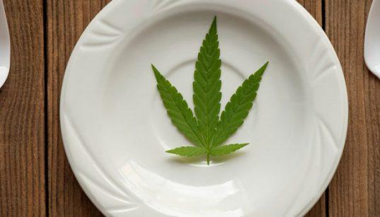efectos de cocinar con marihuana